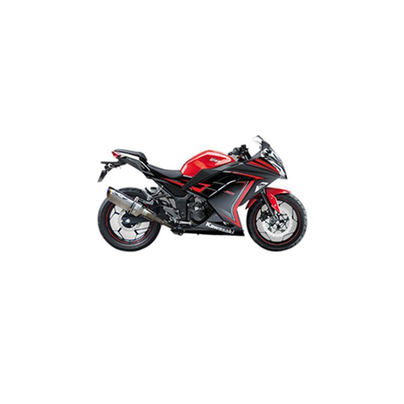 Kawasaki Ninja 250 SE Beet Performance