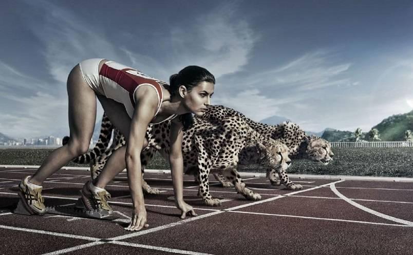 Fokus dan Konsisten